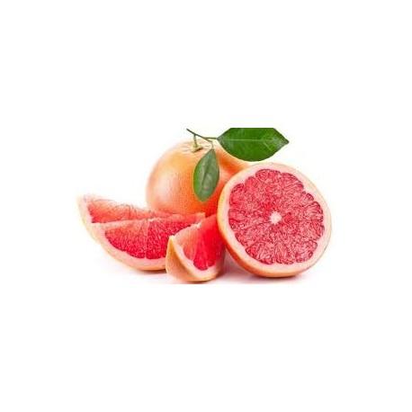 Limonero.Citrus limon. C-25 (100/130)
